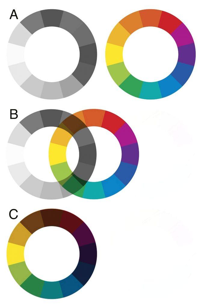 The Many Shades Of Greyscale Lisa Mitrokhin